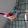 Hängelampe<br>mit vögeln
